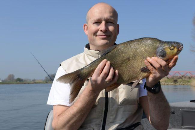 Na al een mooie van 55 volgt nog een grotere van 56 cm, prachtige brasem uit de IJssel