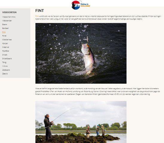 Informatie over de veel voorkomende vissoorten