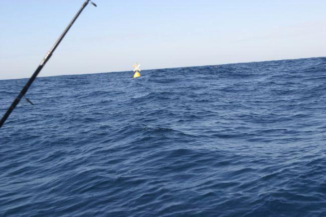 Een doodgewone boei, maar wel speciaal voor sportvissers neergelaten