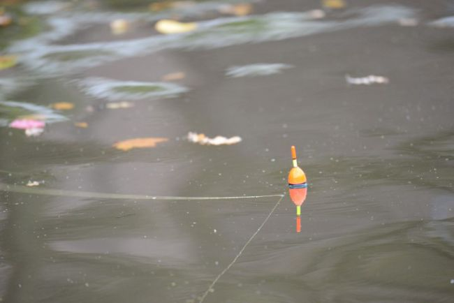 De Trolling Float van Fox loopt mooi achter de boot aan
