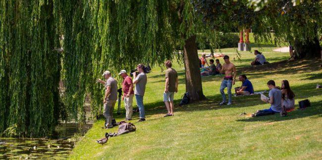 Genoeg actie in Zwolle op een snikhete zomerdag