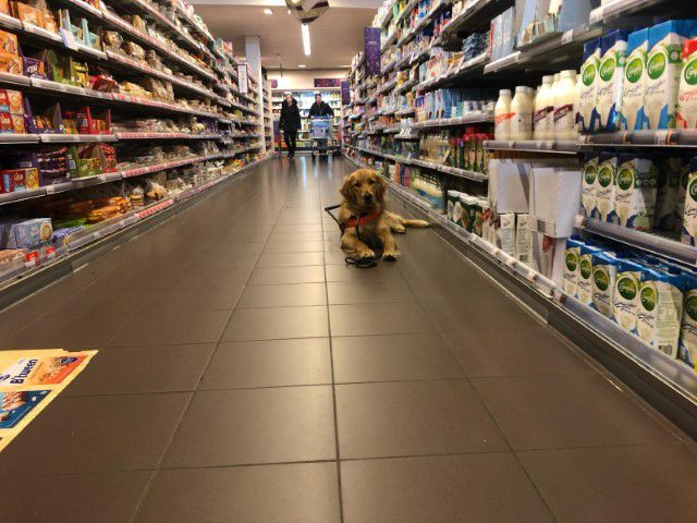 Niels in opleiding in de supermarkt