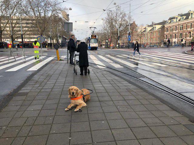 Een dagje trainen in Amsterdam