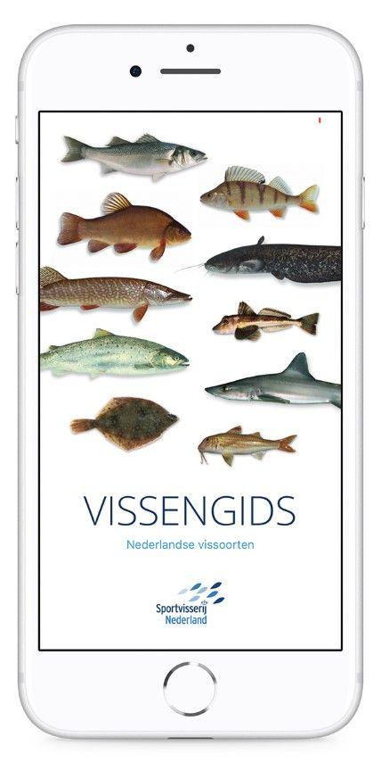 De Vissenscanner is onderdeel van de bestaande Vissengids app